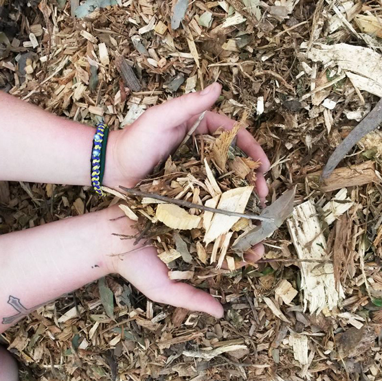 Leaf mulch--we bag mulches and this is as low cost option.