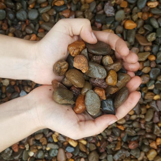 Hunter river pebble