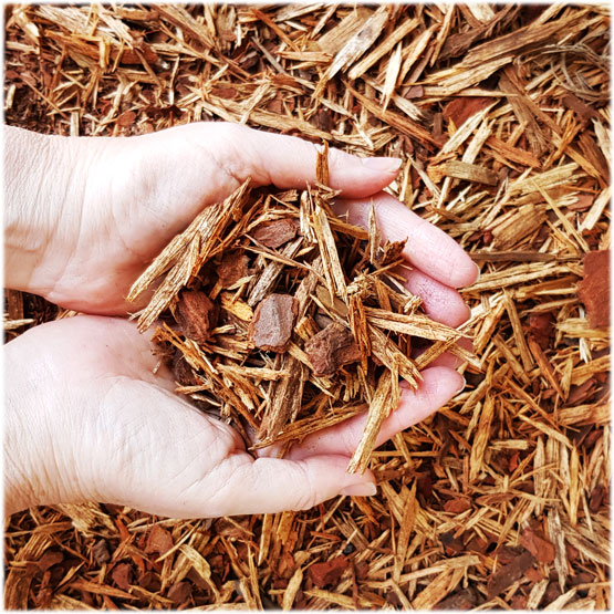 Pine mulch--low cost and beautiful honey colour. Mixed bark and shredded wood.